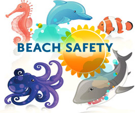 A Purple Beach Warning Flag Means Dangerous Marine Life Has Been Spotted To Be A Safe And Smart Beach Goer Educate Your Purple Beach Beach Safety Marine Life