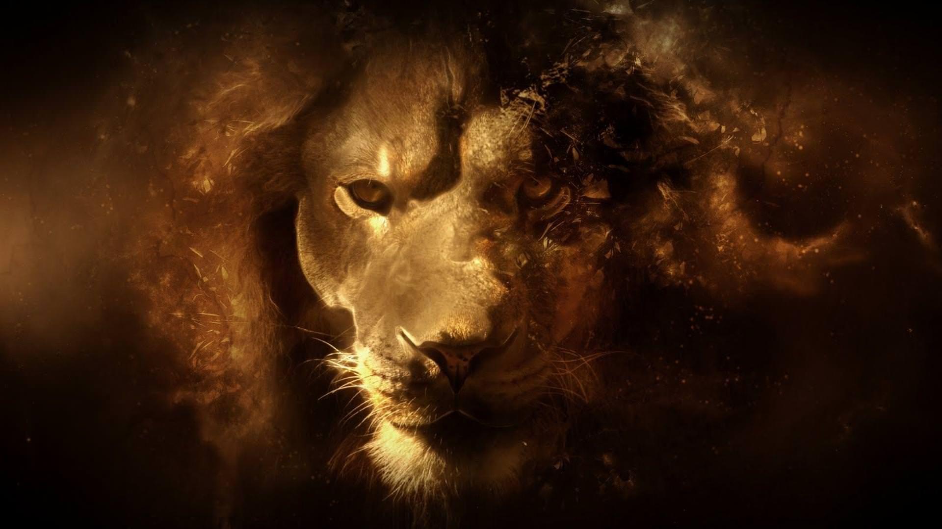 3d Lion 1920x1080 Lion Hd Wallpaper Lion Wallpaper Abstract Lion