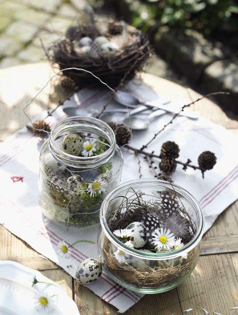 Geben Sie etwas Stroh, feine gesammelte Zweige und Moos in ein weites Weckglas. Garnieren Sie das ganze mit Ganseblümchen, Stiefmütterchen oder Hornveilchen. Den letzten Schliff geben Sie Ihrer österlichen Tischdeko mit Deko-Federn und künstlichen Wachteleiern aus dem Bastelshop.  (Foto: MSL/Kramp + Gölling) #weckgläserdekorieren
