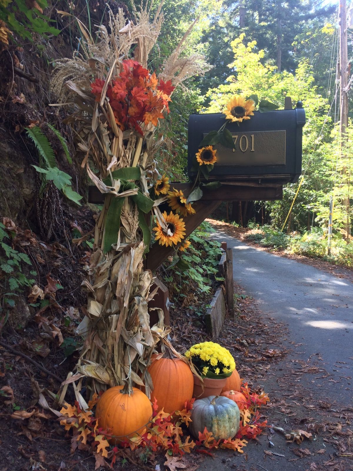 Mailbox decorated for fall and halloween with cornstalks Fall outdoor decorating with pumpkins