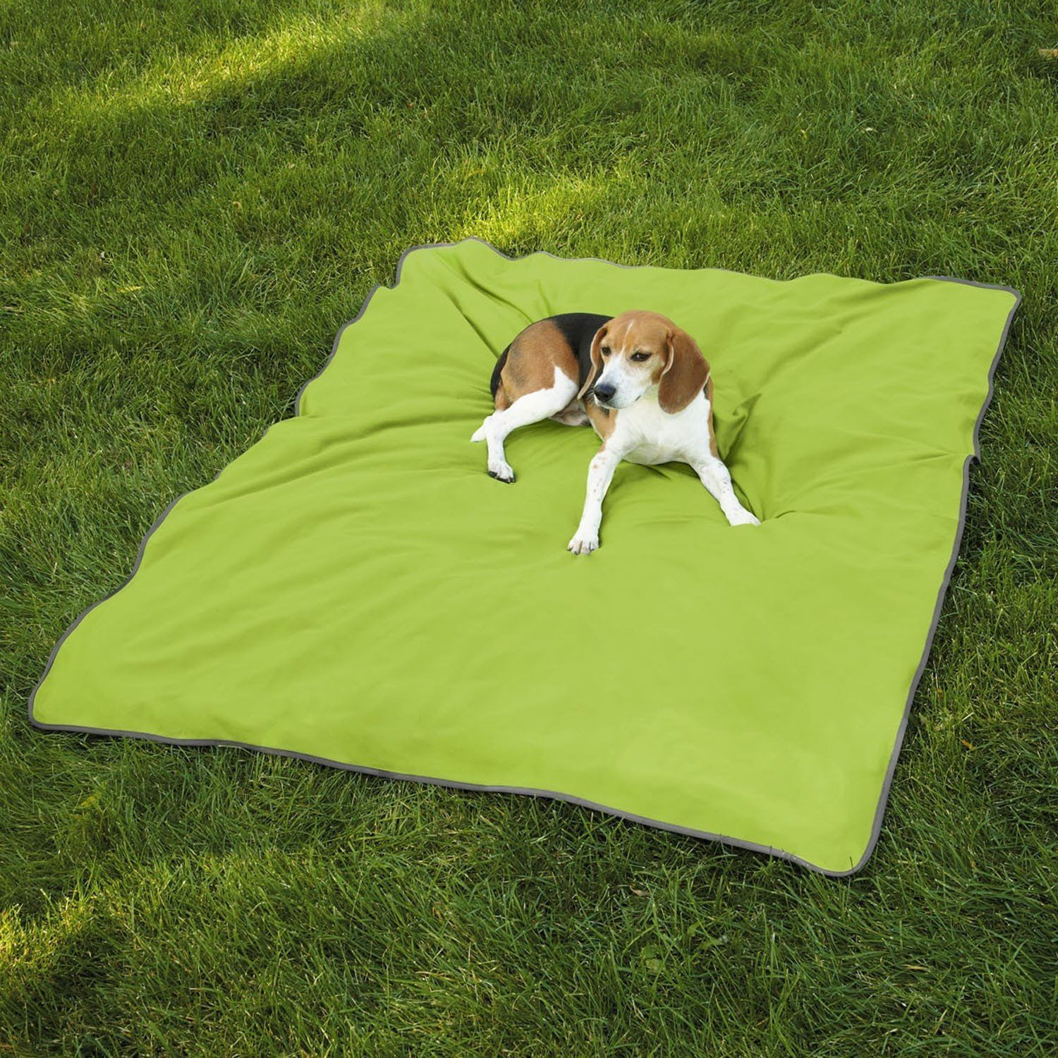 Insect Repellent Dog Blanket