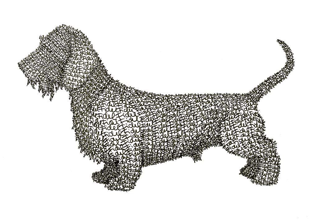 Anti-Art Pets: Fidel's Dachshund Dog, 2007, commission, pitt pen on watercolour paper, 30 x 42 cm.