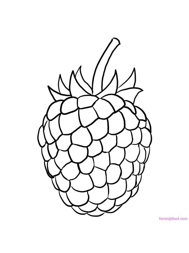 Raspberry Coloring Image Raspberries Are The Fruit Of The Family Of Berries Which Have Very Beauti Coloring Pages Coloring Pages To Print Fruit Coloring Pages