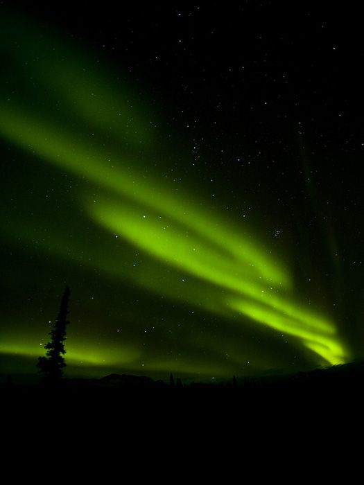Aurora Borealis in Alaska.I want to go see this place one day.Please check out my website thanks. www.photopix.co.nz