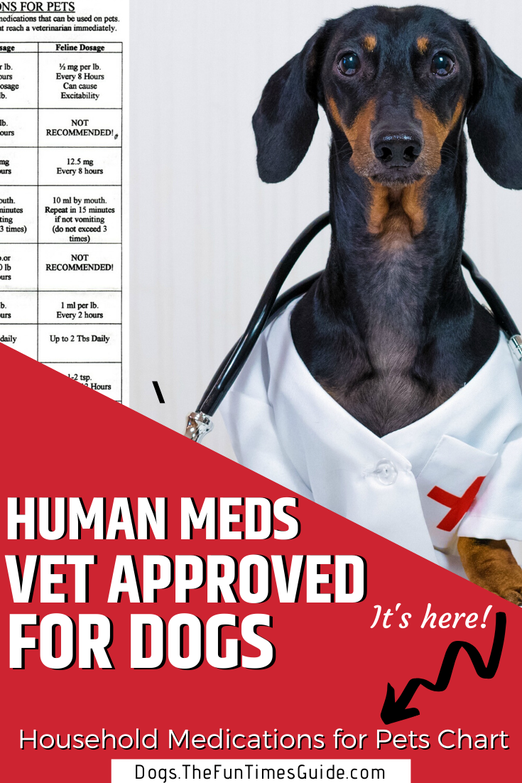 Acceptable Household Medications For Pets Chart From My