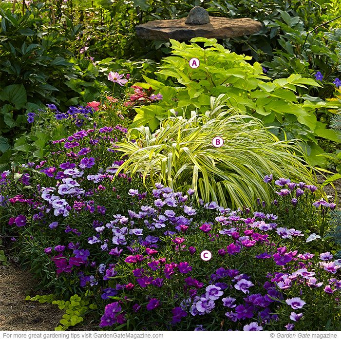 Colorful Shade Garden Combos