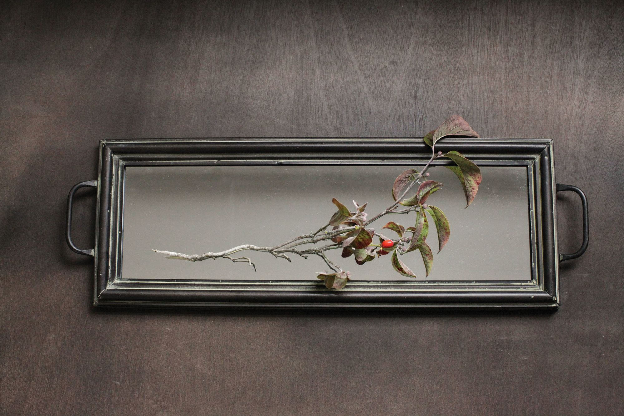 Honey grey decorative mirrored tray home pinterest for Decorative bathroom tray