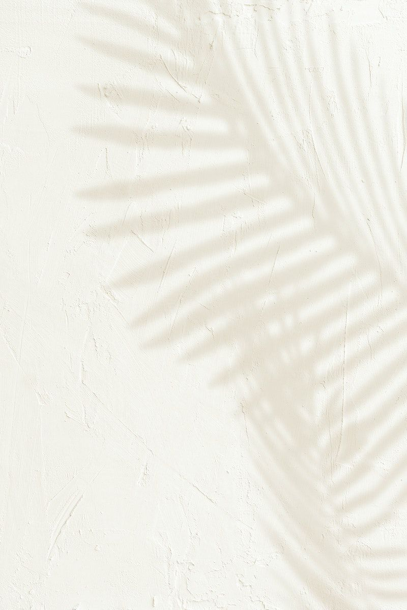 Download premium psd / image of Shadow of palm leaves design element by Teddy about shadow, palm leaf, leaf shadow, Shadow palm, and shadow palm leaves 2407230
