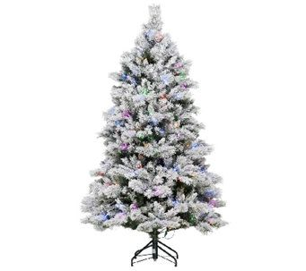 christmas tree ed on air santas best - Santas Best Christmas Trees