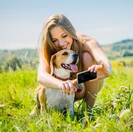 remboursement des frais vétérinaires grâce à une assurance chien c'est Chouette