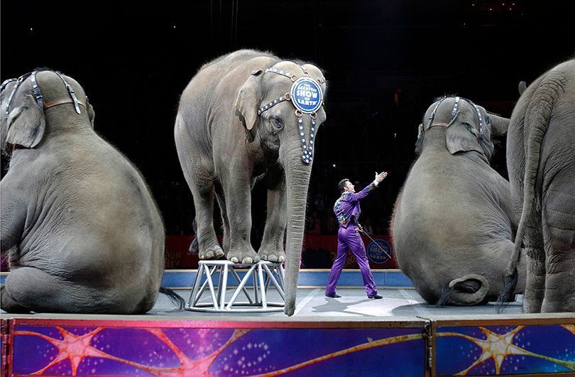 """Curtain falls on """"Greatest Show on Earth"""" after 146 years"""