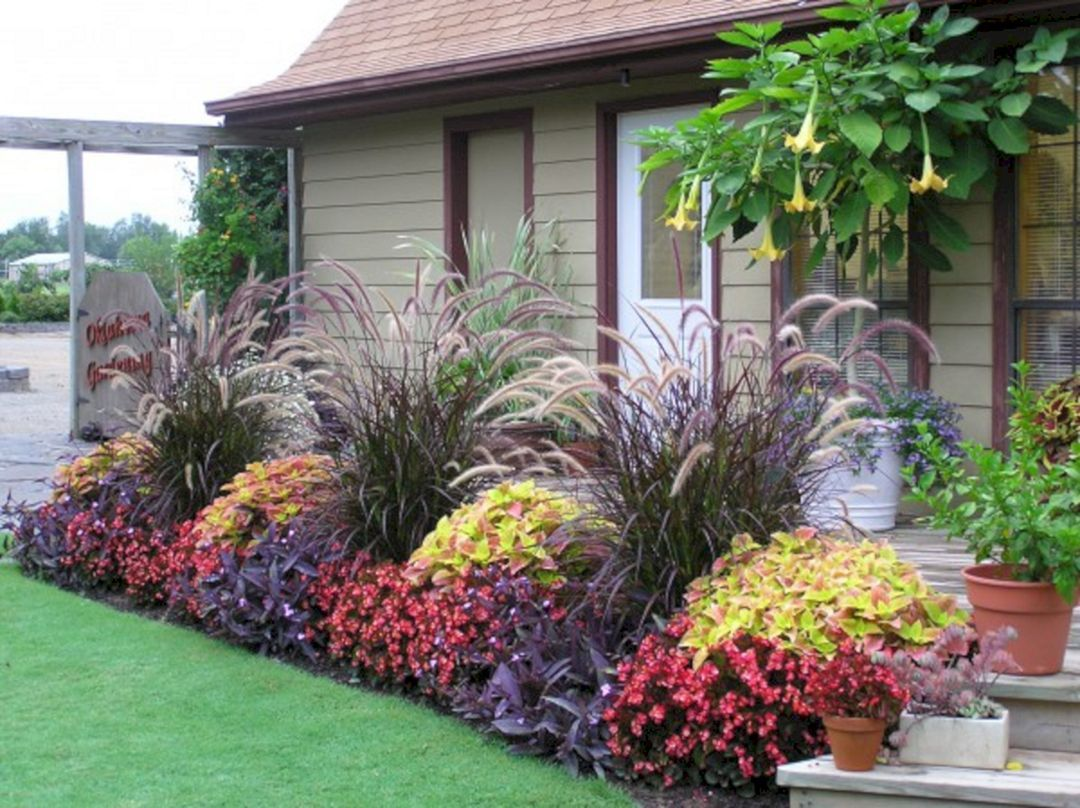 beautiful fall flowers plant