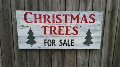 Christmas Trees For Sale Sign Christmas Tree Sale How To Make Christmas Tree Christmas Signs