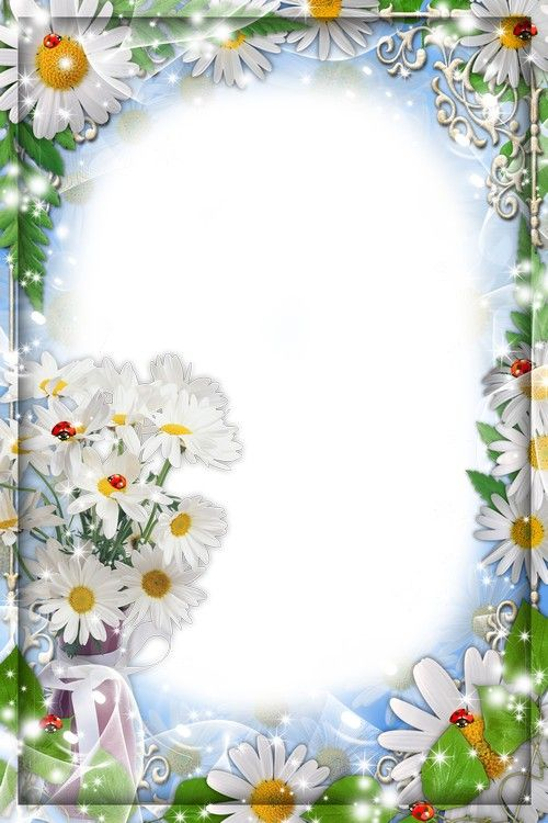 Flower frame for the photo - White daisies | PNG | Pinterest ...
