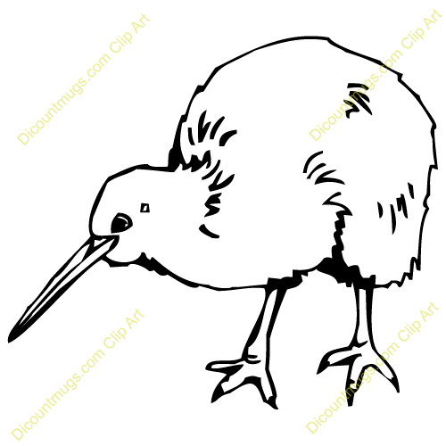 Kiwi clipart black and white, Kiwi black and white Transparent FREE for  download on WebStockReview 2020