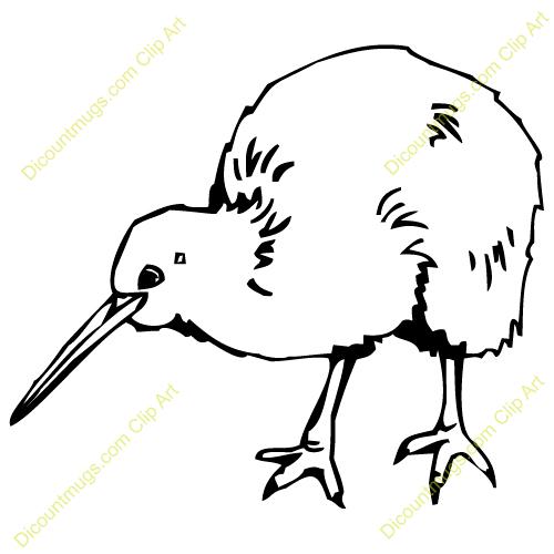 Line Drawings Of Kiwi Similar Galleries Kiwi Bird Drawing Kiwi