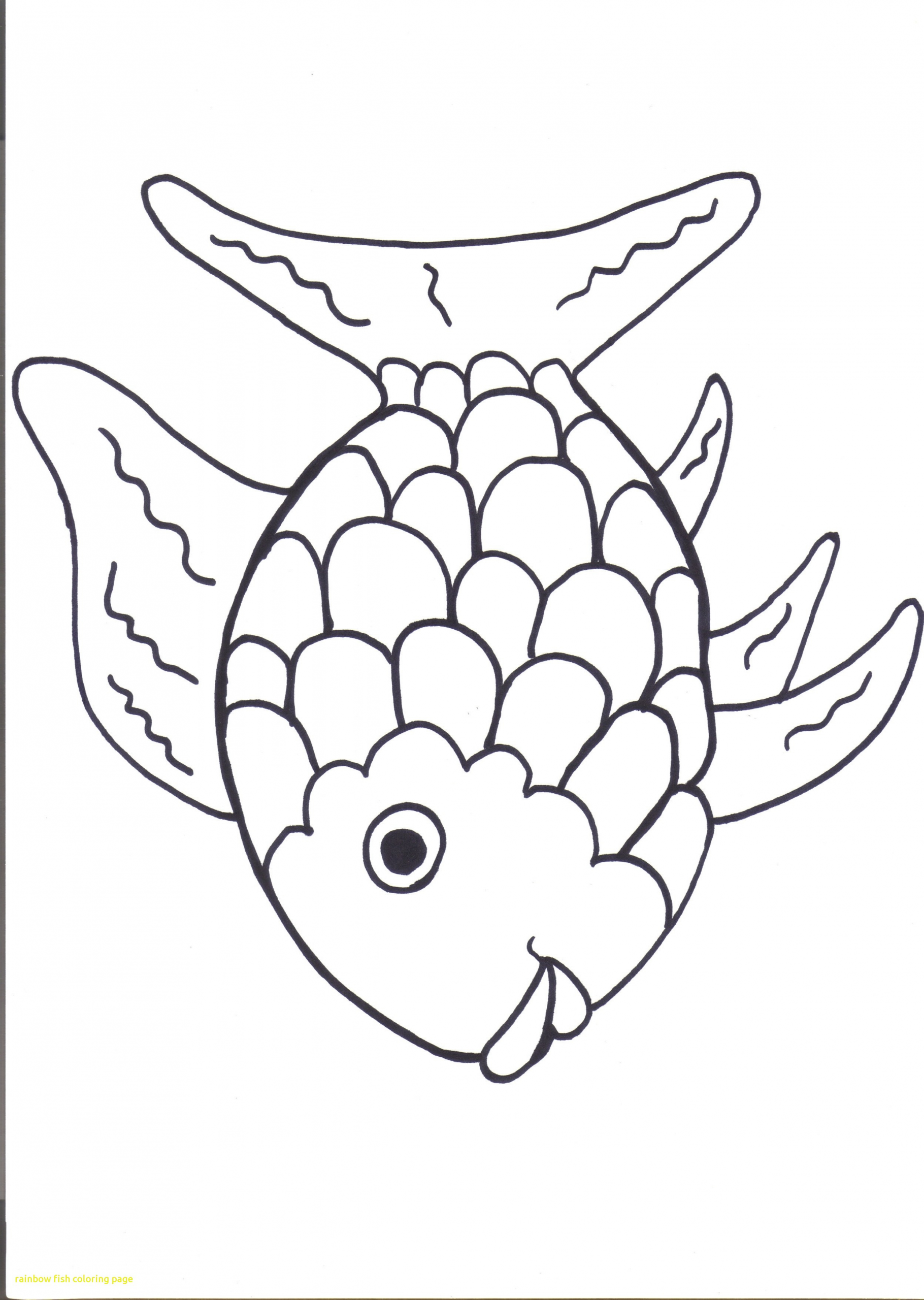 Under The Sea Animal Rainbow Fish Coloring Pages Fish Cartoon Drawing Rainbow Fish Coloring Page Fish Coloring Page