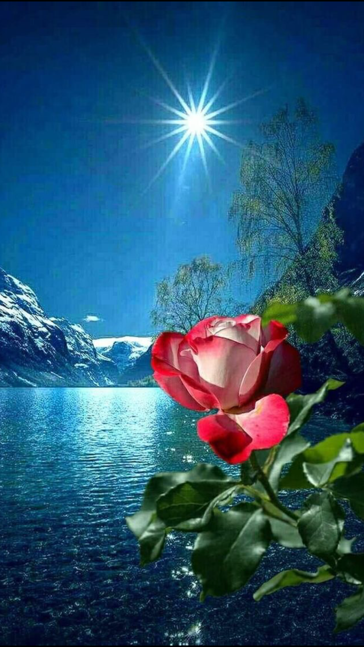 Pin By Shmuel On Big Love Beautiful Flowers Wallpapers Beautiful Nature Beautiful Places Nature
