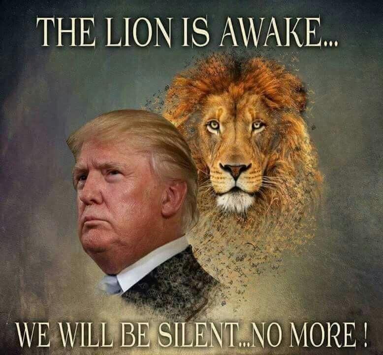 This Lion Does Not Sleep Lion Memes Patriotic Memes Lion