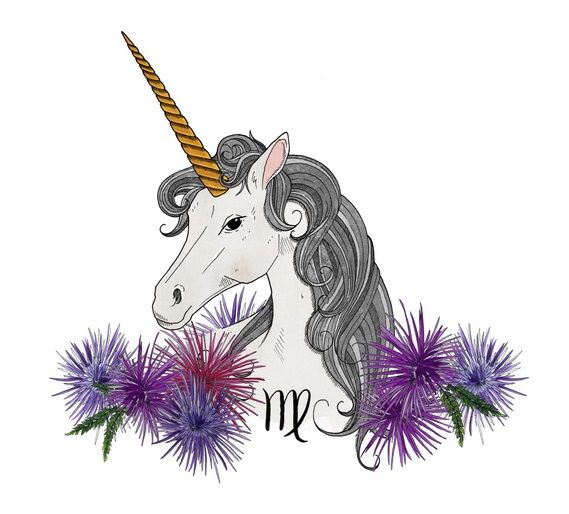 Aquarius Animal Spirit Virgo spirit animal | ...