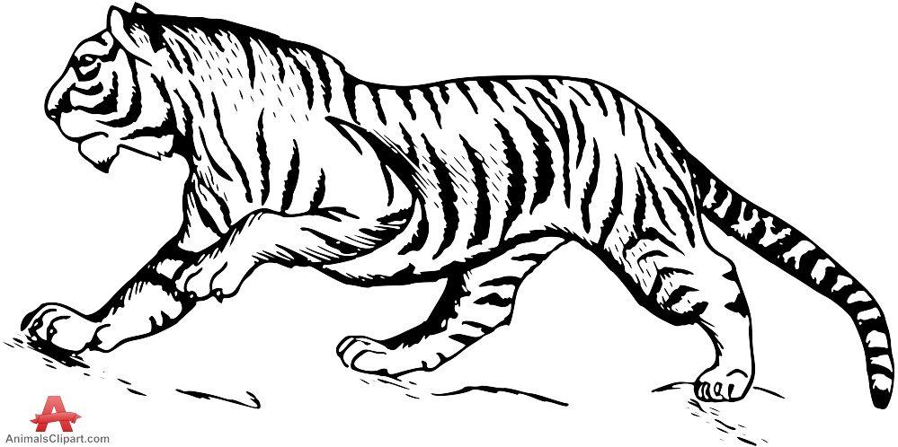 Tiger Black And White Cute Tiger Clip Art Free Clipart Images Clipart Best Clipart Best Free Clip Art Clip Art Free Art