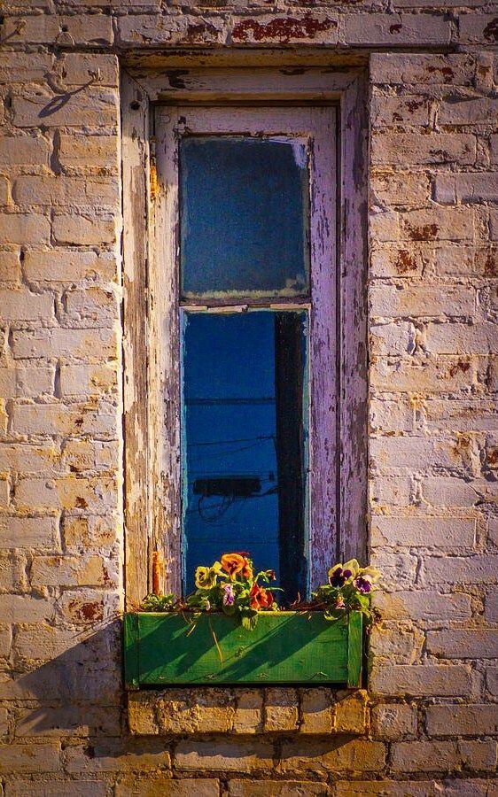 Windowbox Planter Windows Doors Arched Windows Old