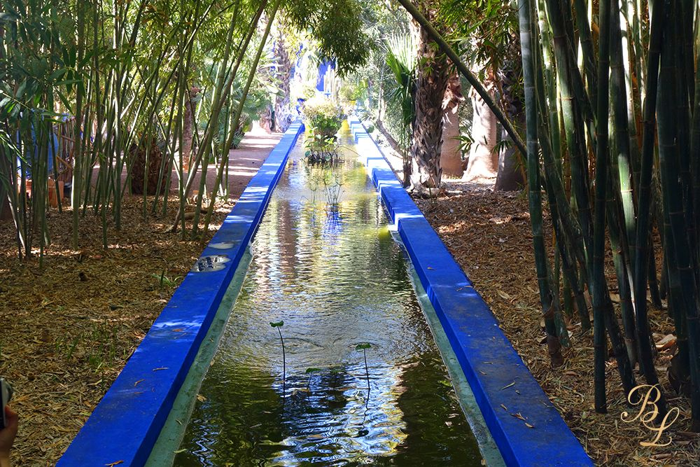 Promenade magique au Jardin de Majorelle (Marrakech ...