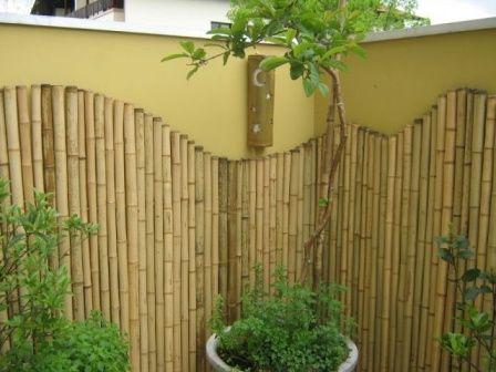 decorar pared con bambu Galerías, exteriores Pinterest String - decoracion con bambu