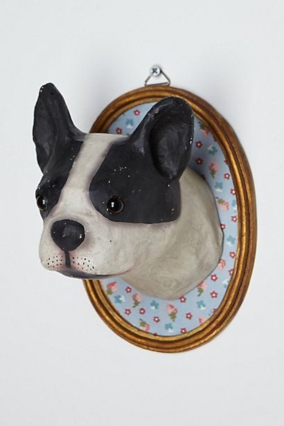 Pet Portraits By Caitie Brennan On Must Make Canine Animals