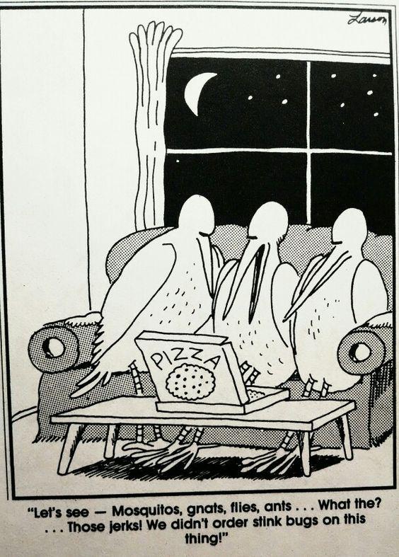 Friday Bug Funny! Far side cartoons, Far side comics