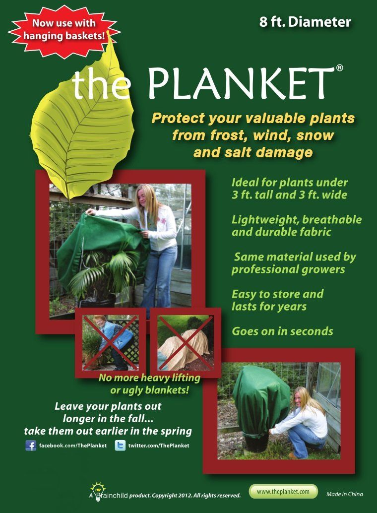 the Planket Frost Protection Plant Cover, 8