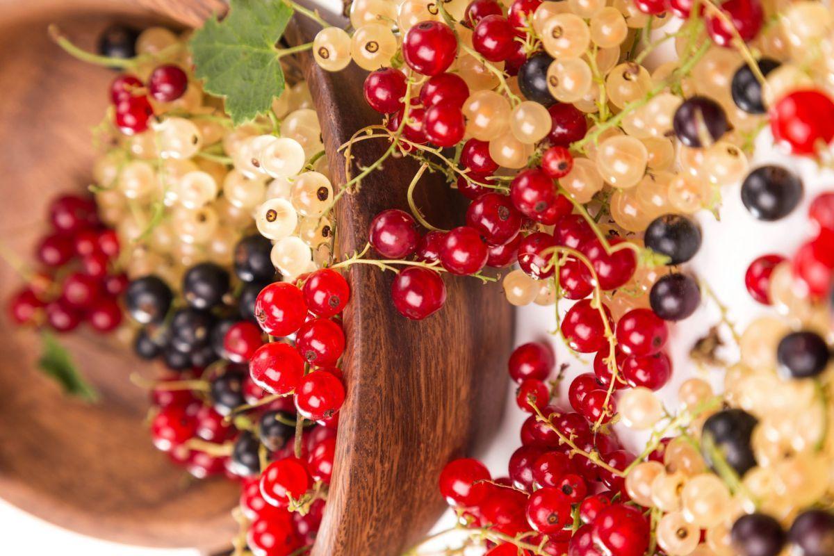 Ovocie, ktoré prečistí celý organizmus, má antiseptické účinky, je považované za účinnú prevenciu proti rakovine, výbornú ingredienciu do varenia...
