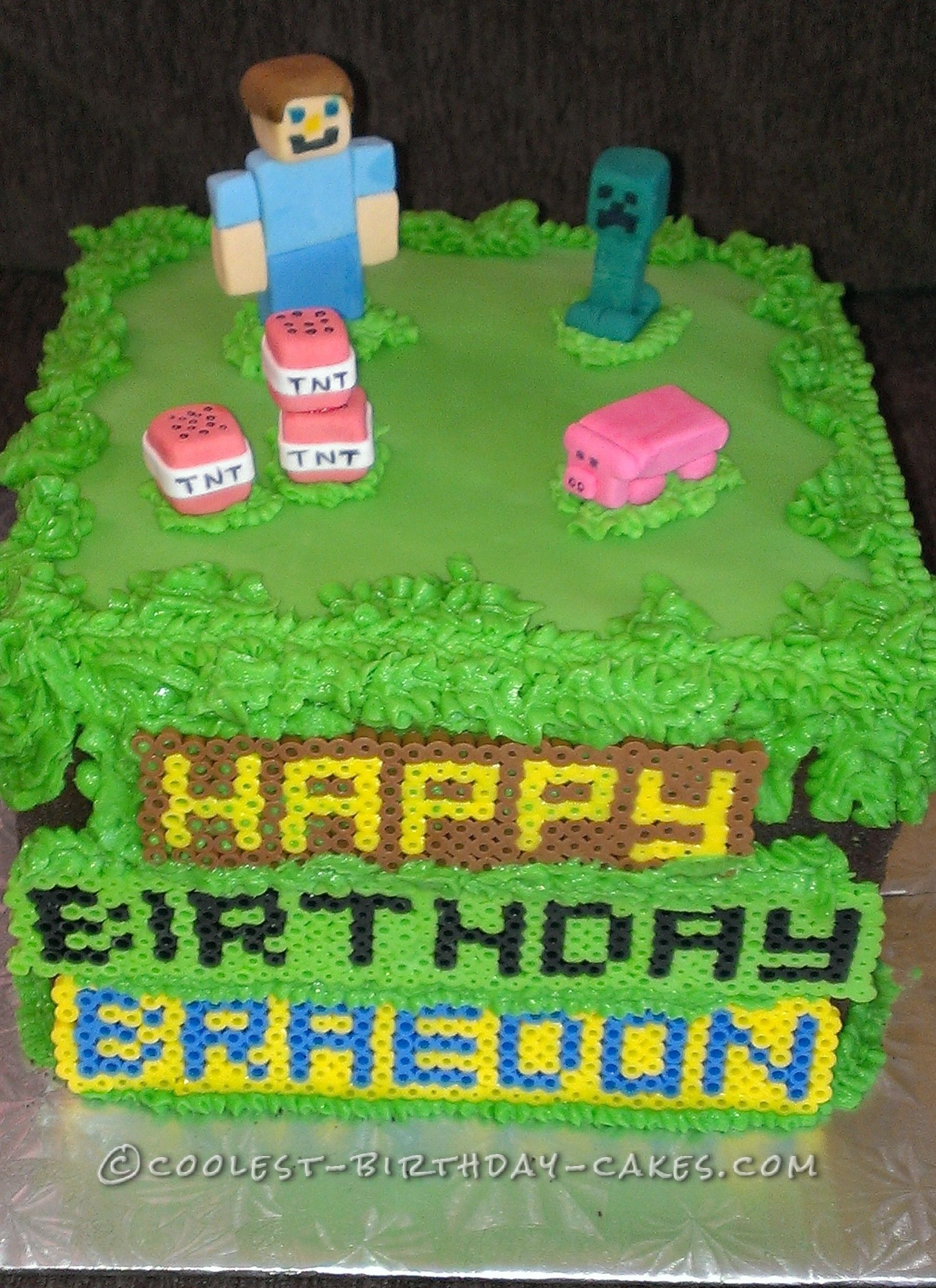 Minecraft Birthday Cake For 10 Year Old Boy Minecraft Birthday Cake Birthday Cupcakes Boy Boy Birthday Cake