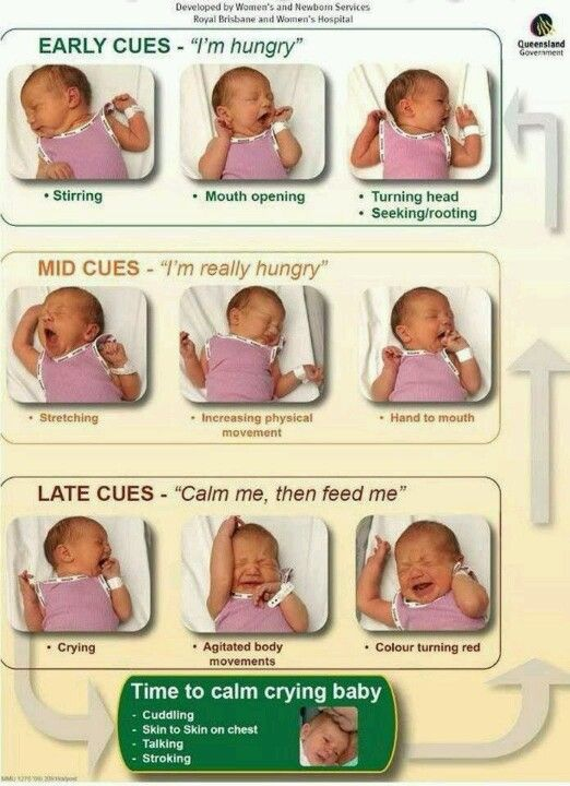 This is an incredibly accurate infographic - I have seen my newborn - baby feeding chart