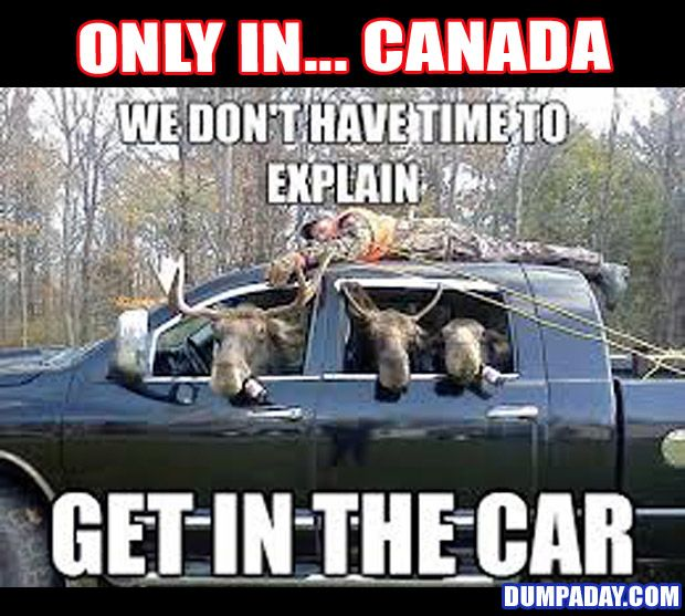 canada day funny Pictures, Images & Photos | Photobucket