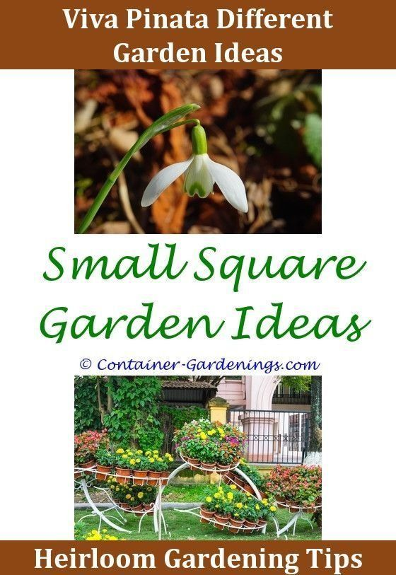 10+ Irresistible Shade Garden Design Zone 4 Ideas - Modern ...