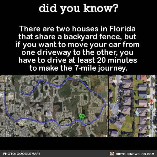 There Are Two Houses In Florida That Share A Backyard Fence But If You Want To Move Your Car From One Driveway To The Othe Funny Facts Wtf Fun Facts Fun