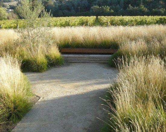 Ziergräser Im Garten Bilder gräser im garten bilder garten bilder