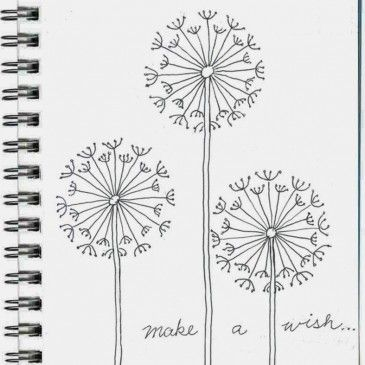How to draw a dandelion more