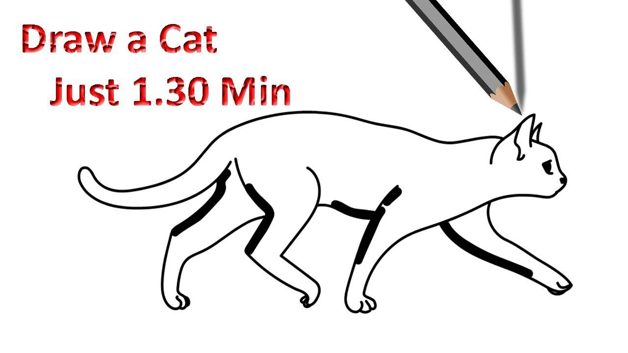 Drawing cat walking step by step