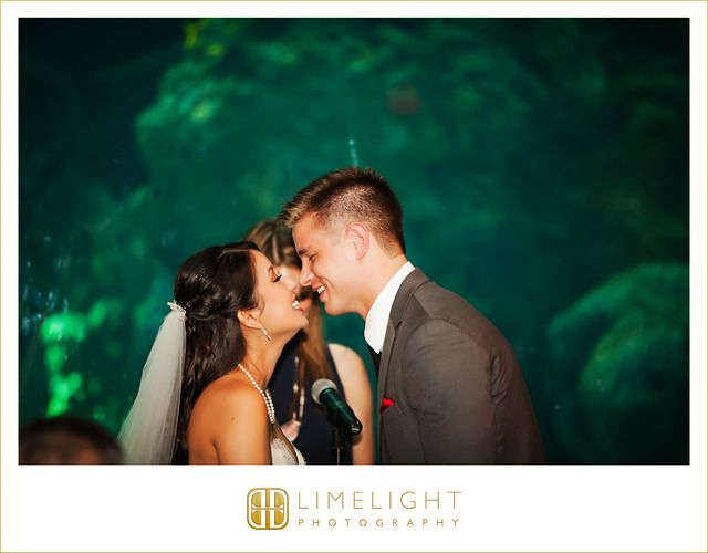 Limelight Photography, Wedding, Wedding Photography, Florida, Florida Wedding, Tampa, Florida Aquarium, Aquarium,  www.stepintothelimelight.com