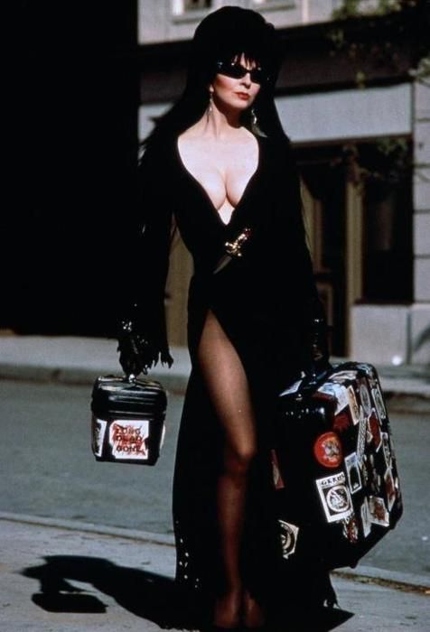 'Elvira - Mistress Of The Dark'. What a fun movie!