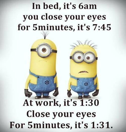 Funny Minion Quotes About School: Funny Minions Quotes Of The Week -