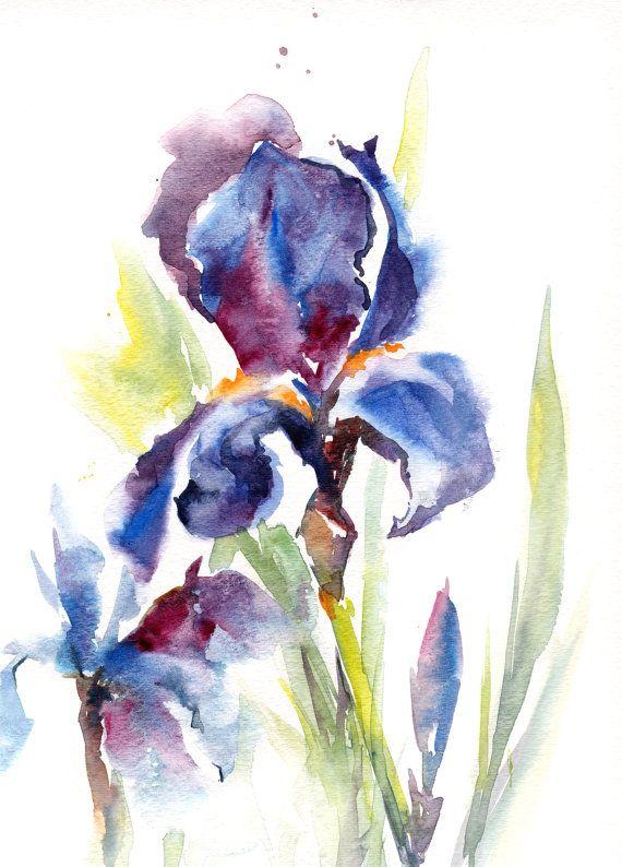 Aquarelle Originale D Iris Fleurs Violet Bleu Par Canotstop Sur