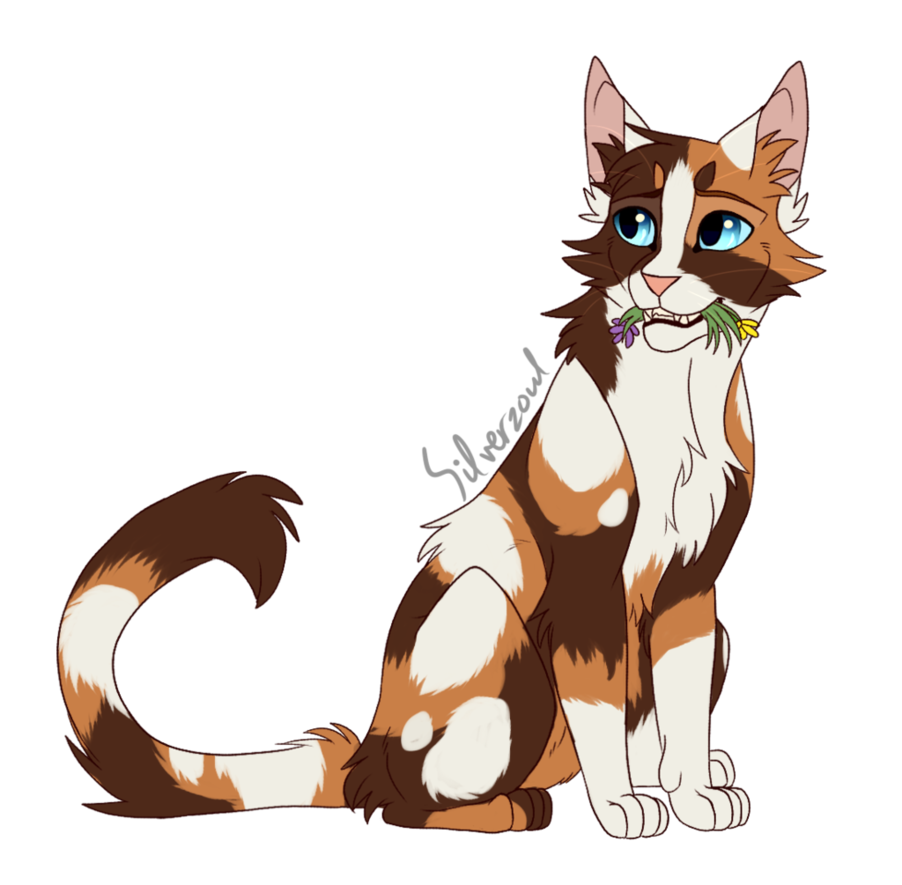 Puddleshine by Silverzoul (With images) Warrior cats art