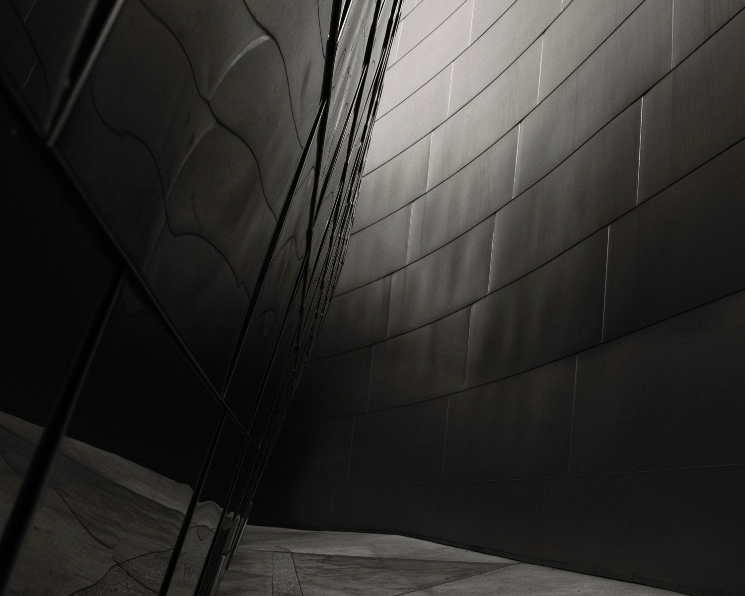 Disney Concert Hall Black and White Print Architecture Building