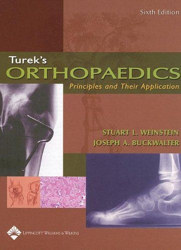 Turek Orthopaedics Pdf