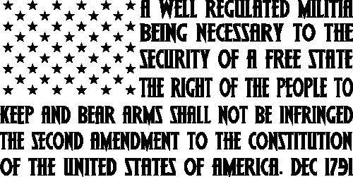 SIX GOOD REASONS Decal Sticker Pro Gun Rights 2nd Amendment 2A nra 9mm 1911 .357