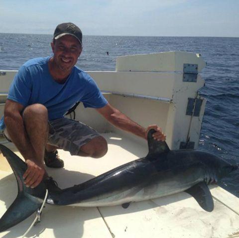 Shark Feeding Frenzy Caught On Camera In Florida Shark Shark Photos Wall Of Fame