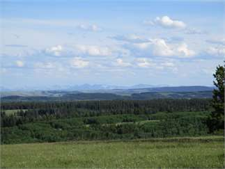 Other, Glacier County, Montana Land For Sale - 80 Acres